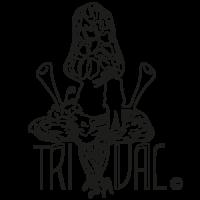 logo-trival-paneles-1